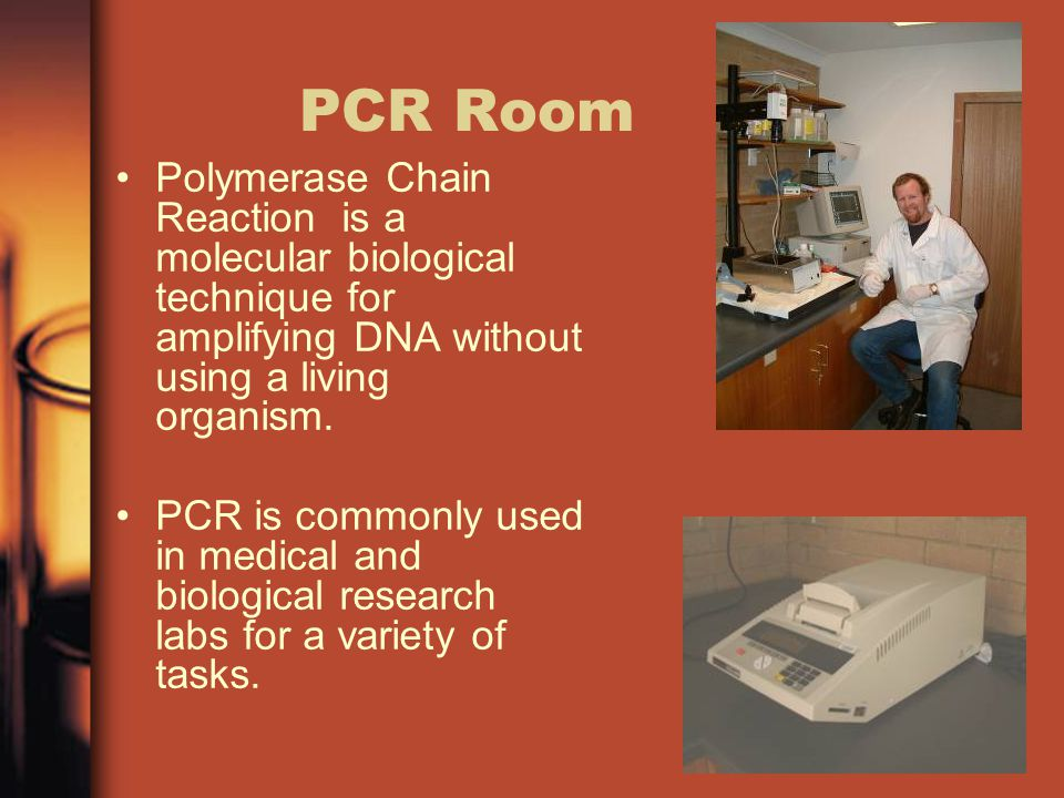 PCR Room Polymerase Chain Reaction is a molecular biological technique for amplifying DNA without using a living organism.
