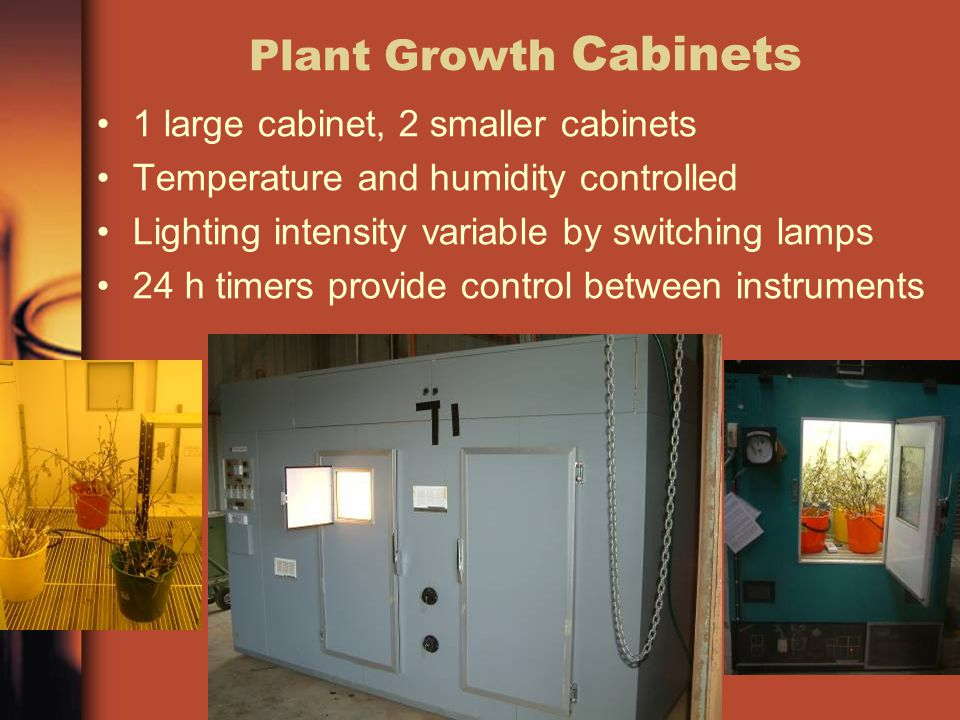 Plant Growth Cabinets 1 large cabinet, 2 smaller cabinets