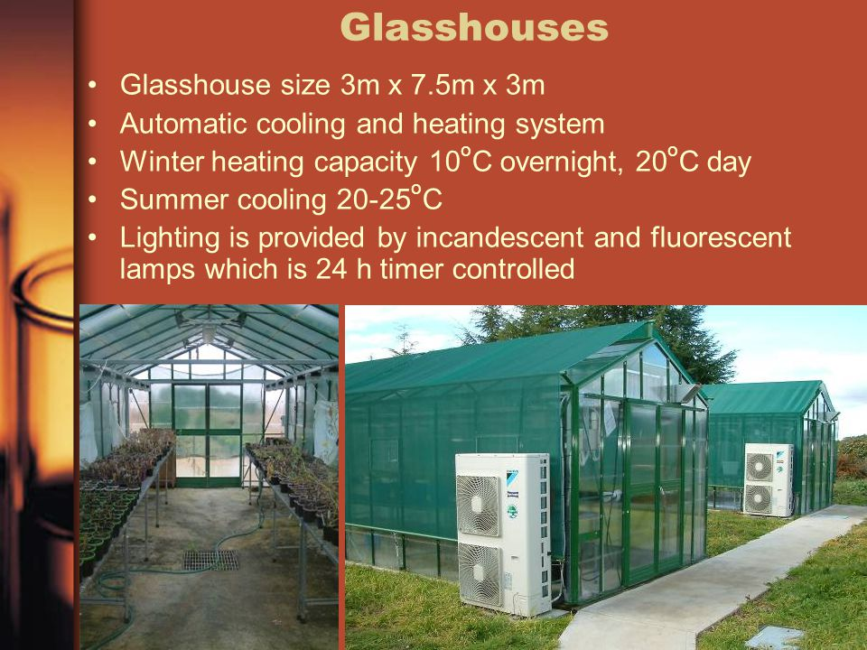 Glasshouses Glasshouse size 3m x 7.5m x 3m