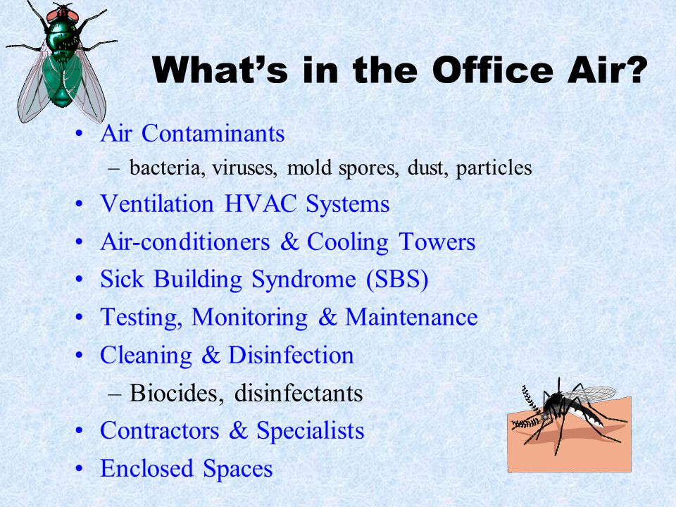 What's in the Office Air