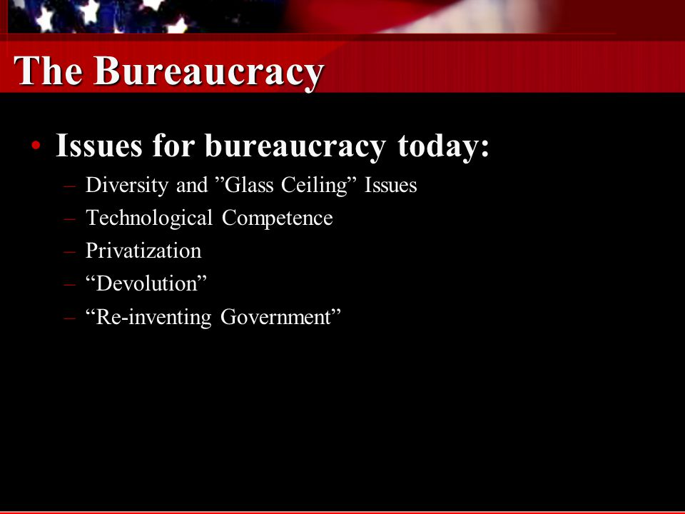 The Bureaucracy Issues for bureaucracy today: