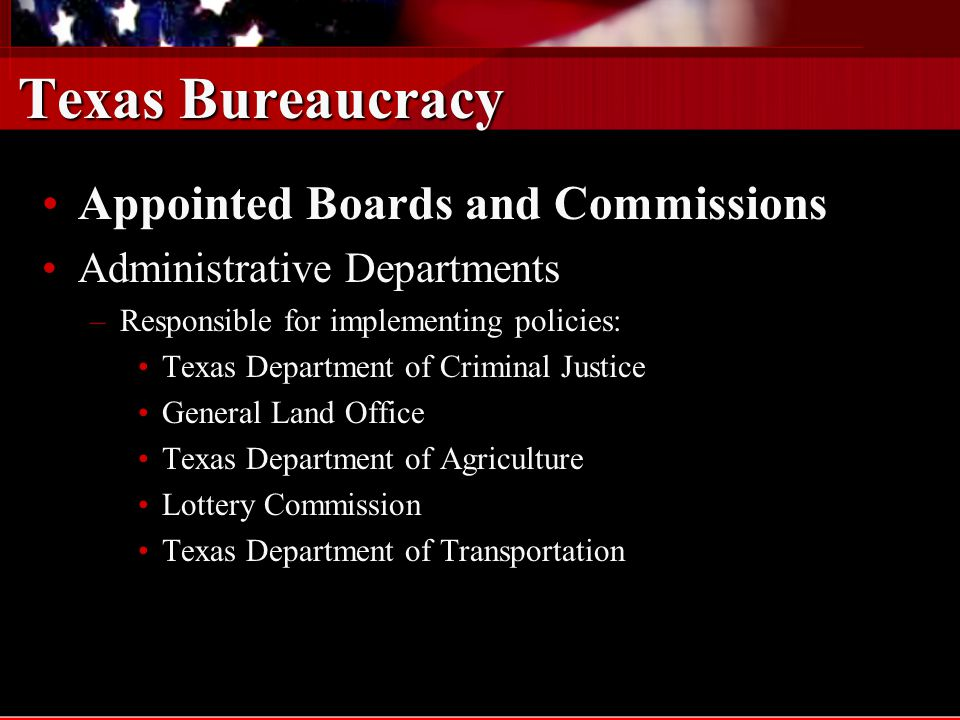 Texas Bureaucracy Appointed Boards and Commissions