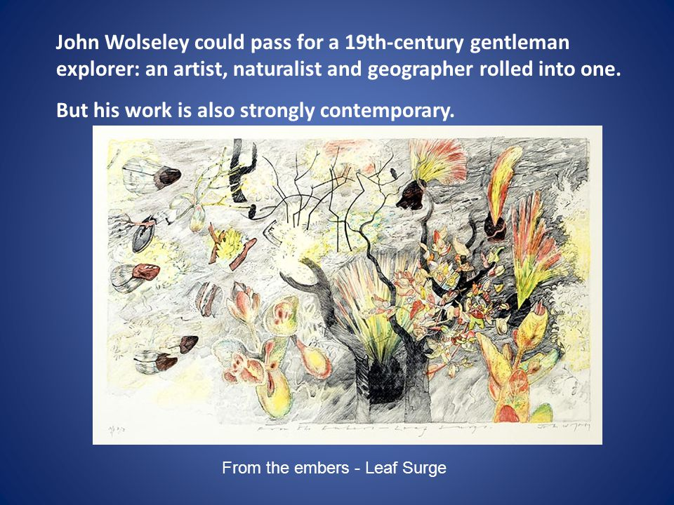 John Wolseley could pass for a 19th-century gentleman explorer: an artist, naturalist and geographer rolled into one. But his work is also strongly contemporary.