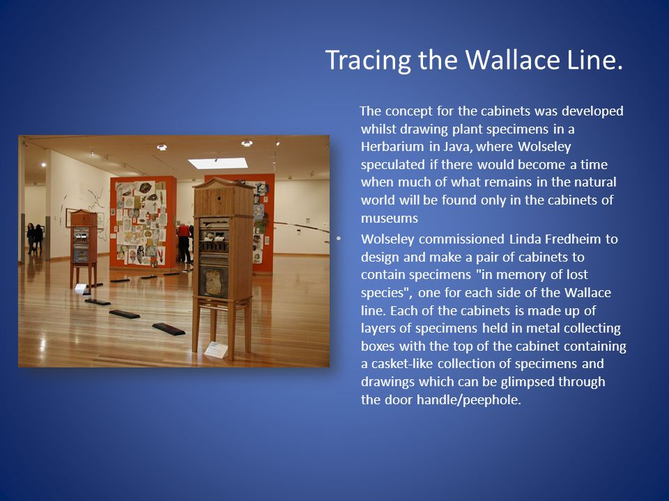 Tracing the Wallace Line.