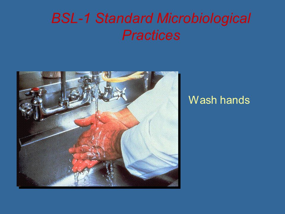 BSL-1 Standard Microbiological Practices