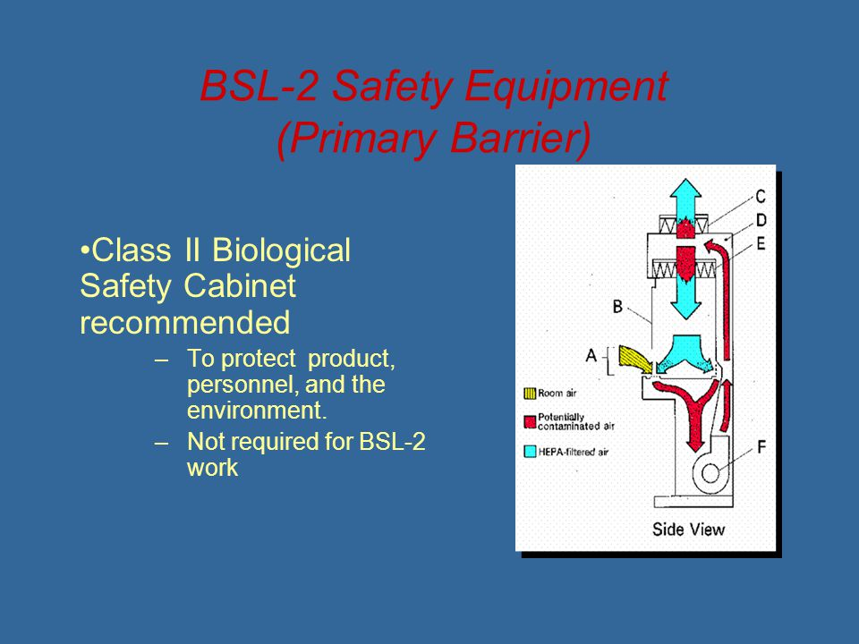 BSL-2 Safety Equipment (Primary Barrier)