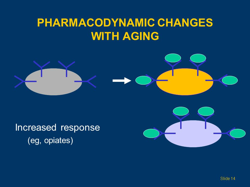 Pharmacodynamic Changes with Aging
