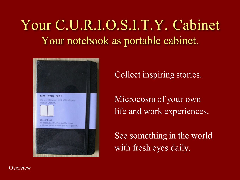 Your C.U.R.I.O.S.I.T.Y. Cabinet Your notebook as portable cabinet.