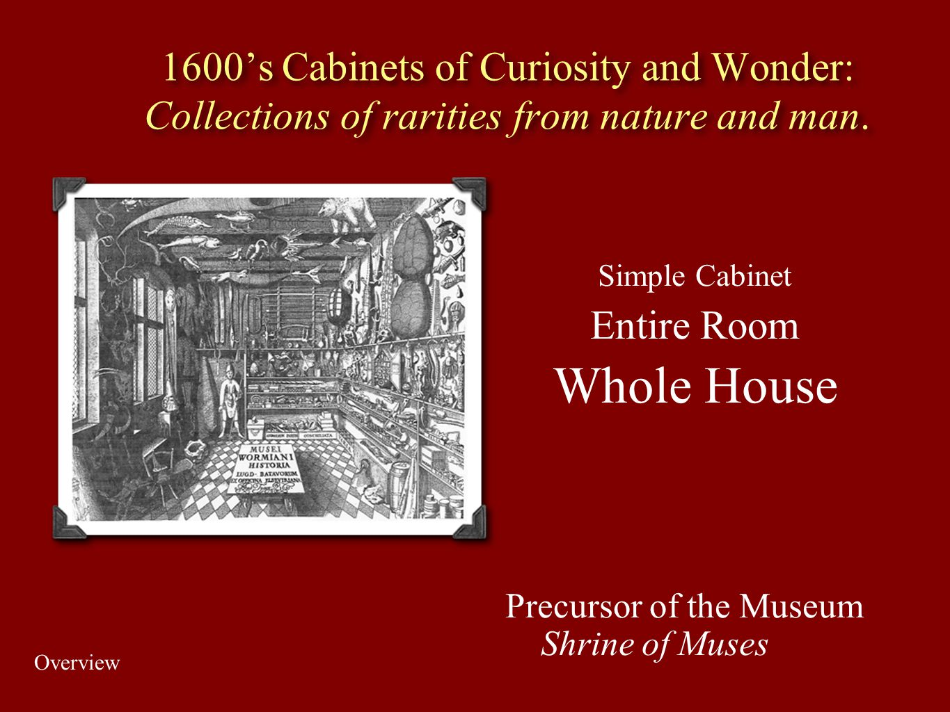 1600's Cabinets of Curiosity and Wonder: Collections of rarities from nature and man.