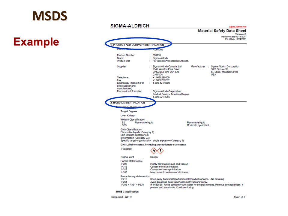MSDS Example