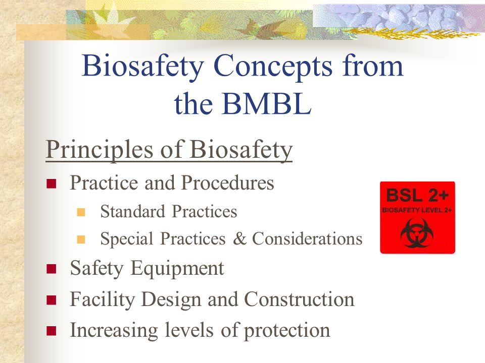 Biosafety Concepts from the BMBL