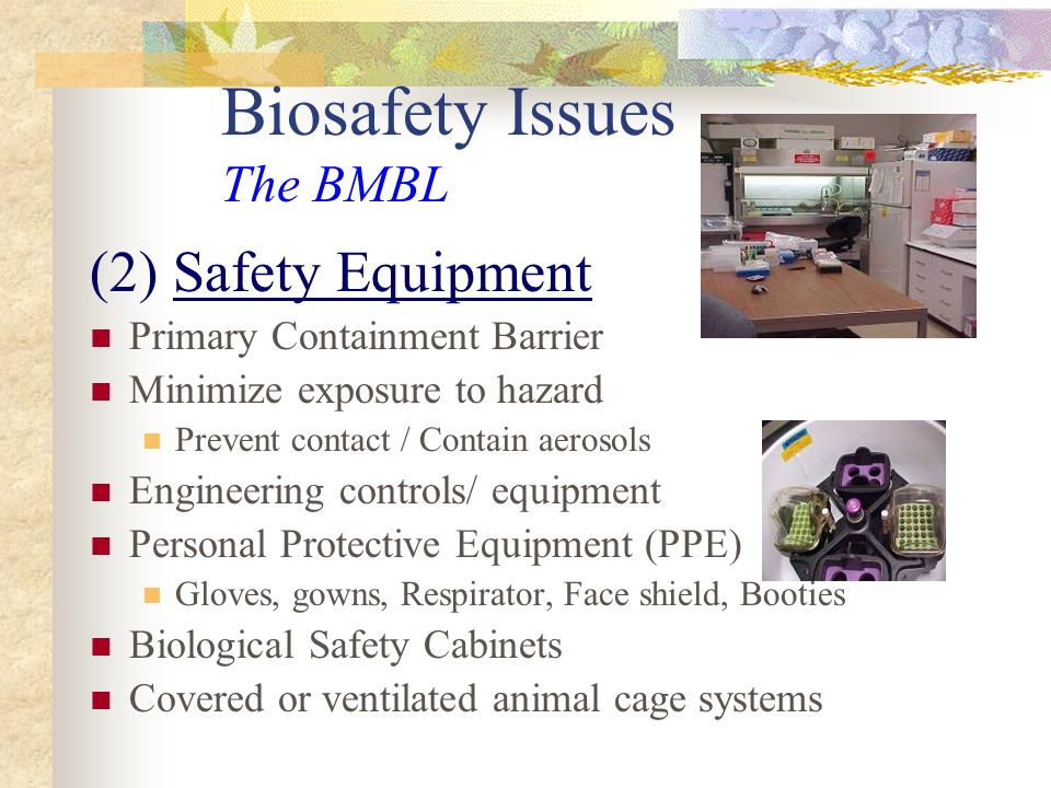 Biosafety Issues The BMBL