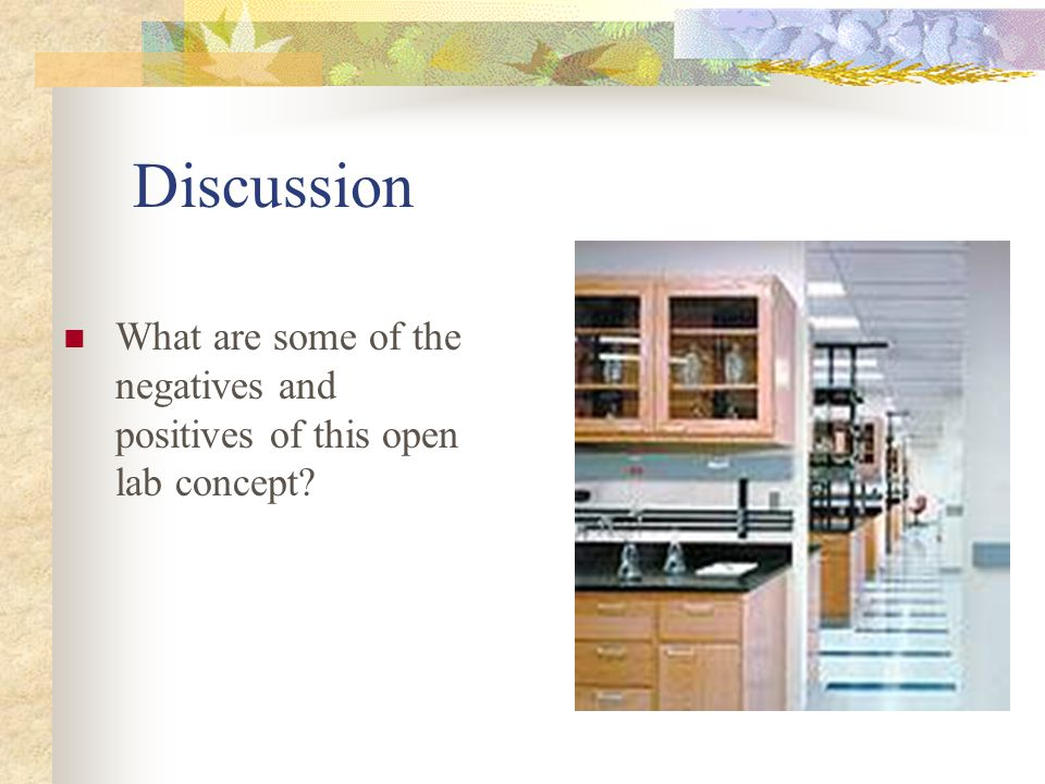 Discussion What are some of the negatives and positives of this open lab concept