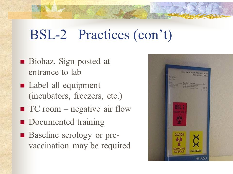 BSL-2 Practices (con't)