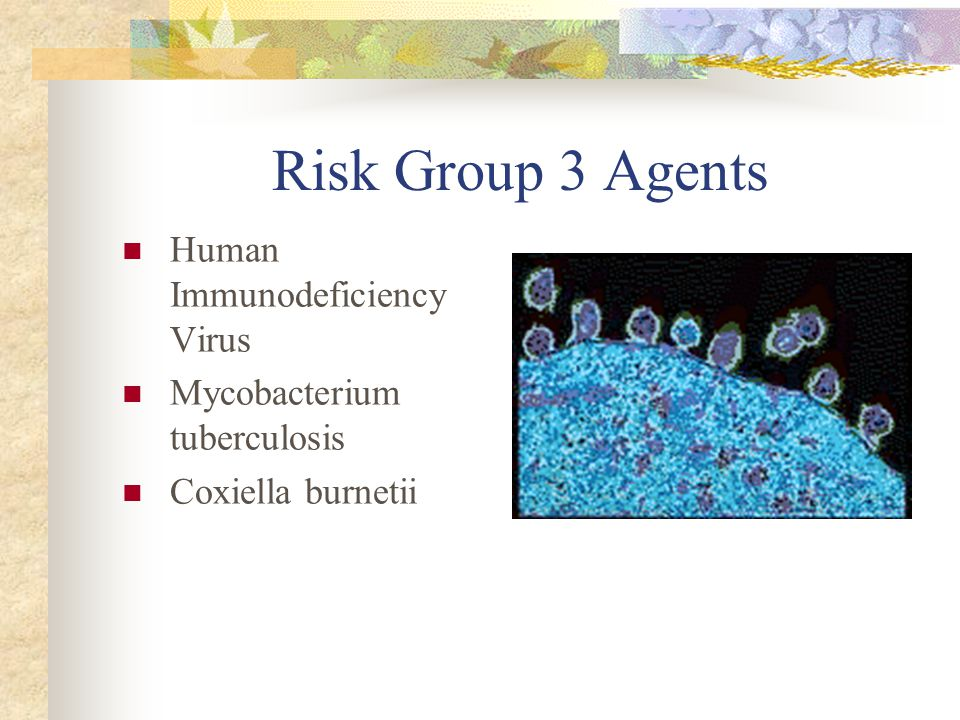 Risk Group 3 Agents Human Immunodeficiency Virus