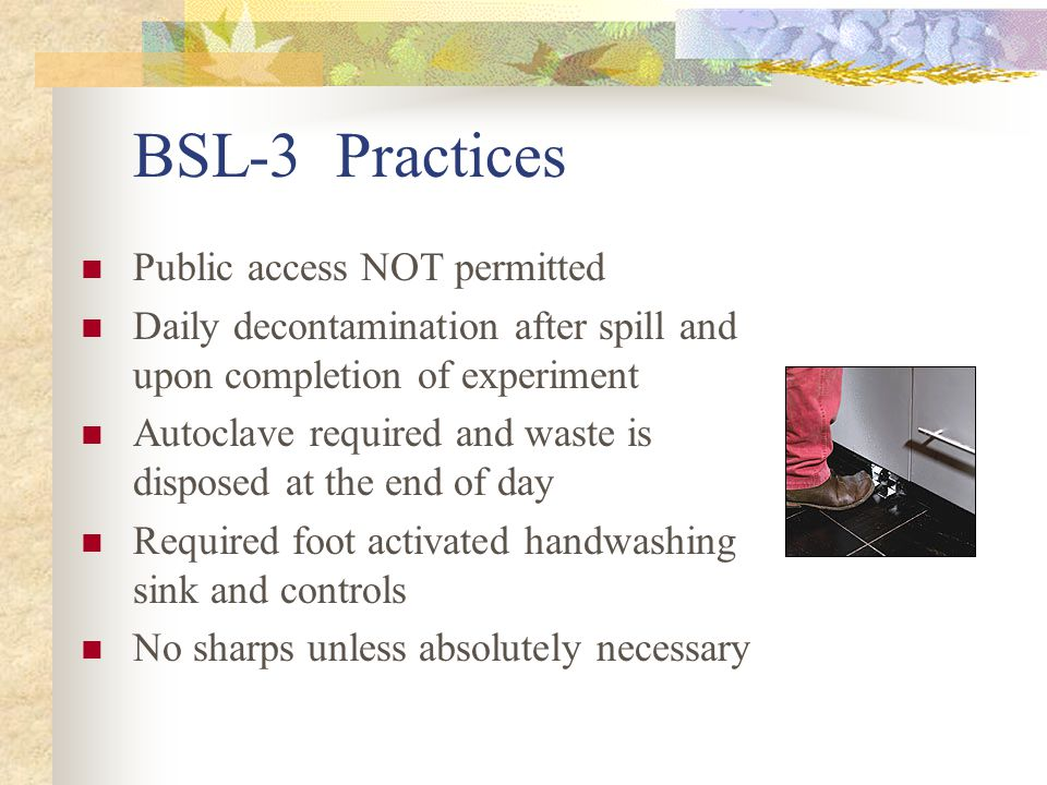 BSL-3 Practices Public access NOT permitted