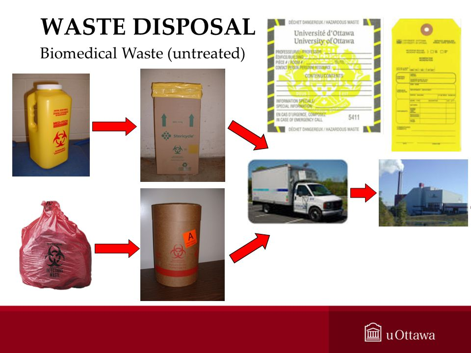 WASTE DISPOSAL Biomedical Waste (untreated)