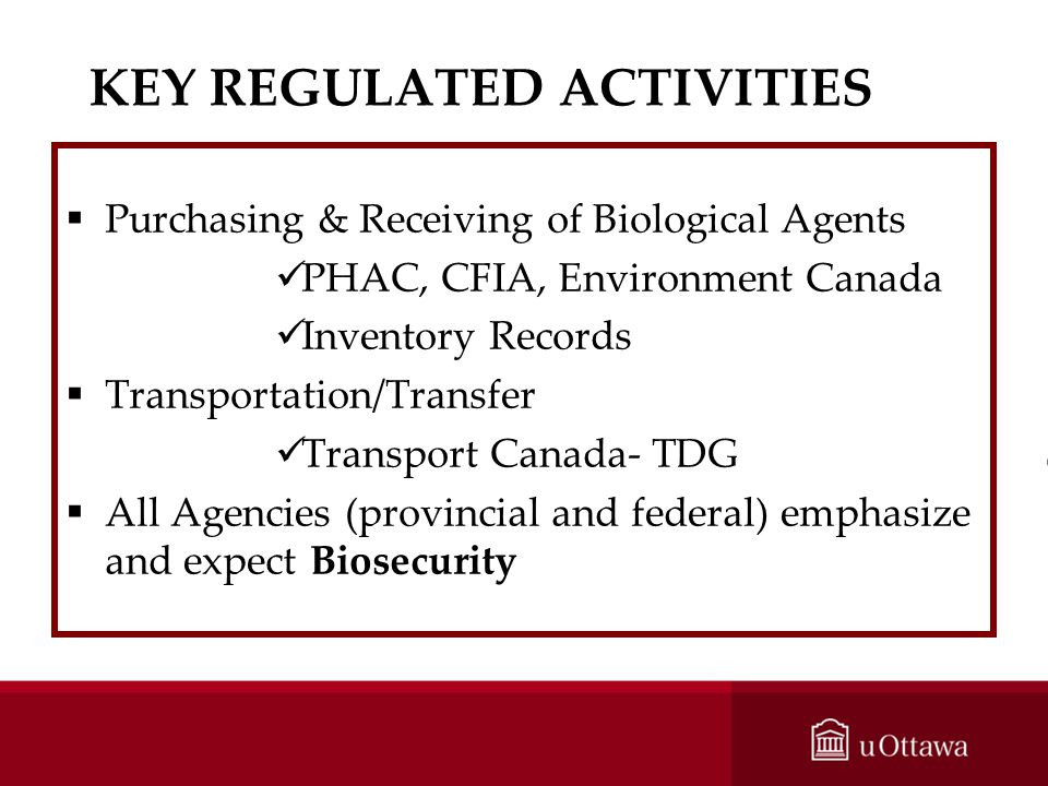 KEY REGULATED ACTIVITIES