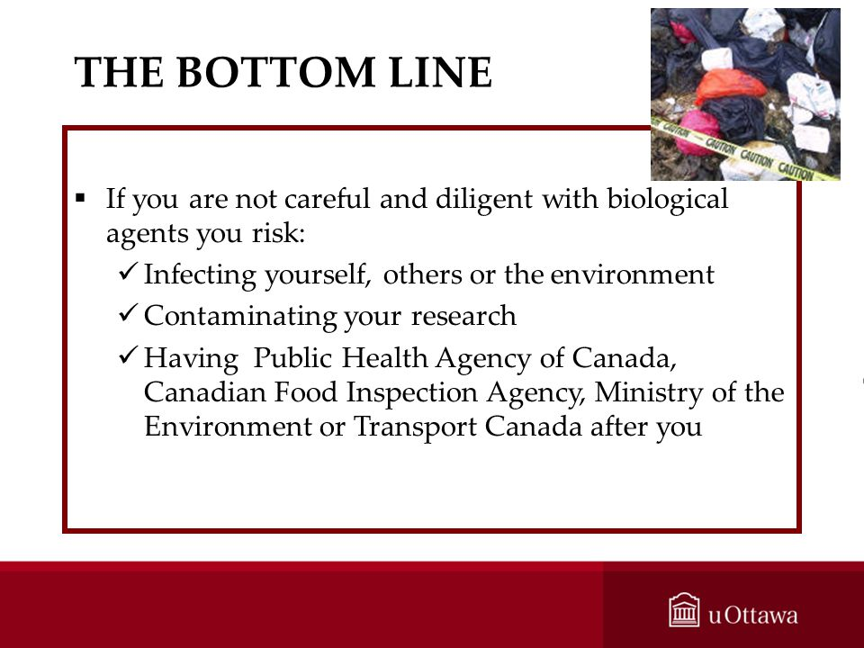 THE BOTTOM LINE If you are not careful and diligent with biological agents you risk: Infecting yourself, others or the environment.
