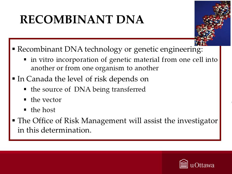 RECOMBINANT DNA Recombinant DNA technology or genetic engineering:
