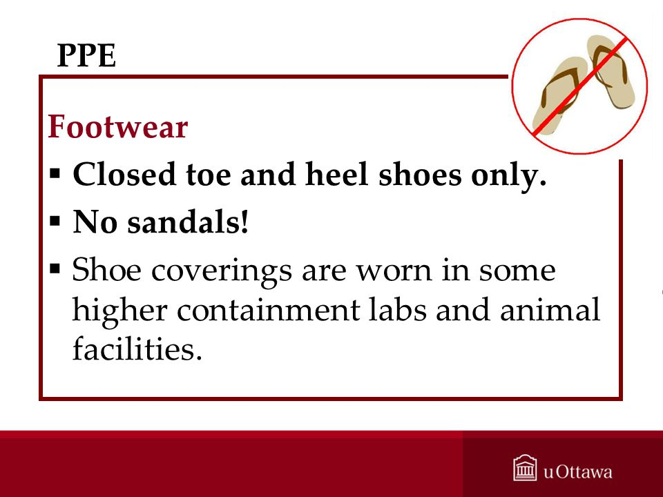 Closed toe and heel shoes only. No sandals!