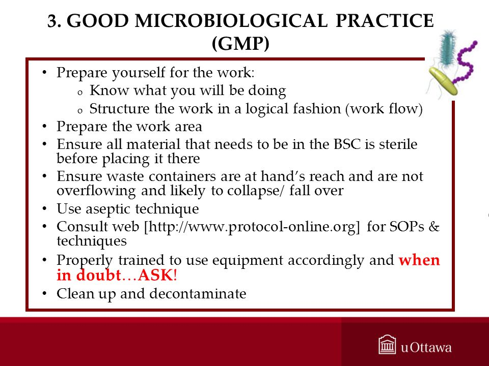 3. GOOD MICROBIOLOGICAL PRACTICE (GMP)