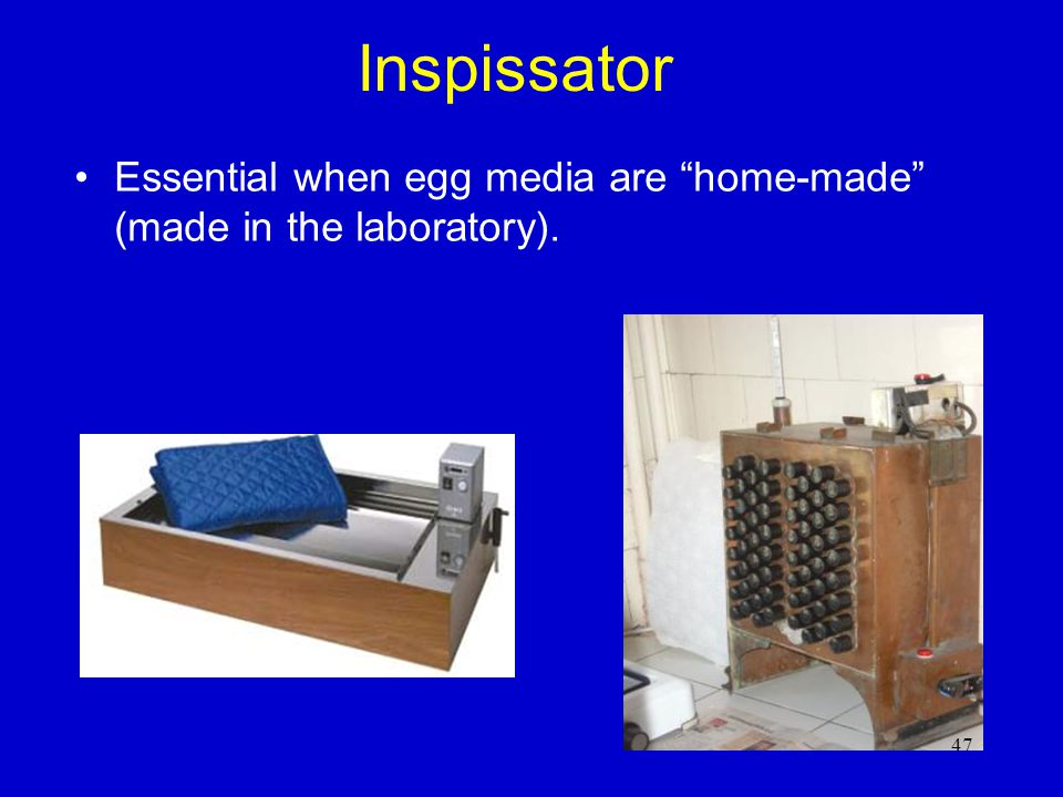 Inspissator Essential when egg media are home-made (made in the laboratory).