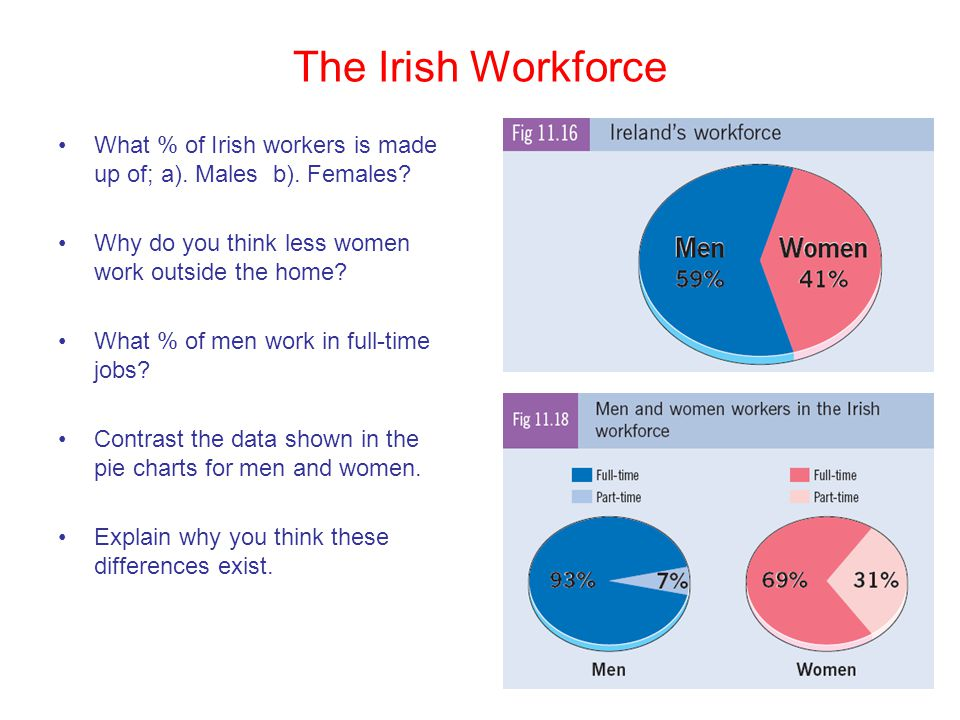 The Irish Workforce What % of Irish workers is made up of; a). Males b). Females Why do you think less women work outside the home
