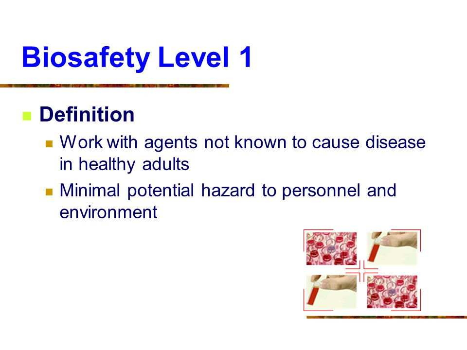 Biosafety Level 1 Definition