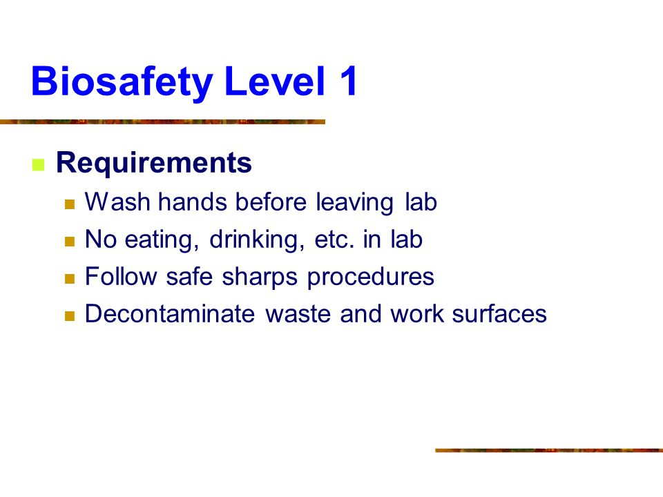 Biosafety Level 1 Requirements Wash hands before leaving lab