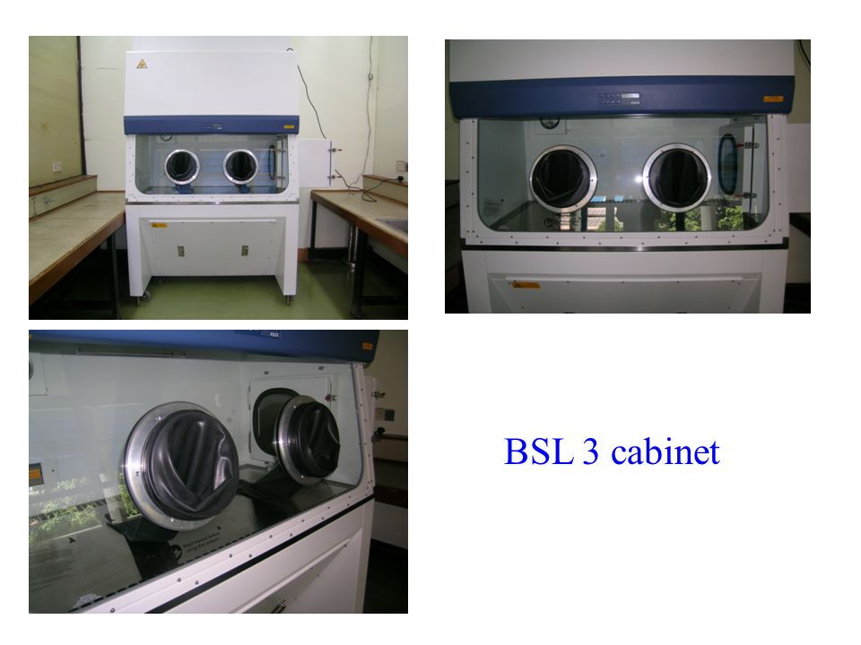 BSL 3 cabinet