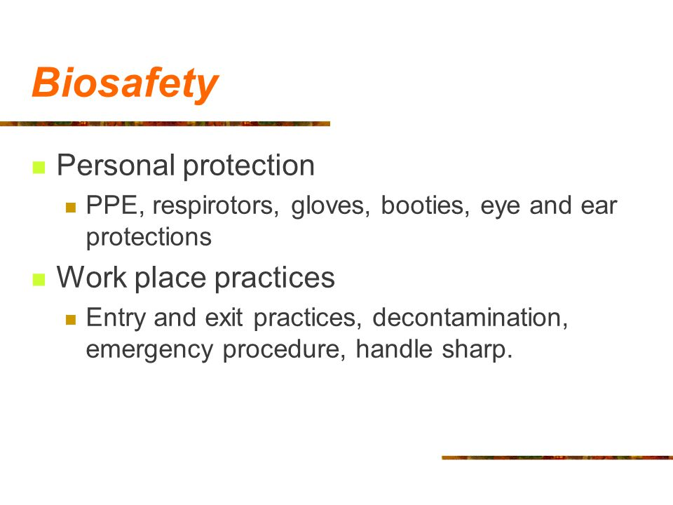 Biosafety Personal protection Work place practices