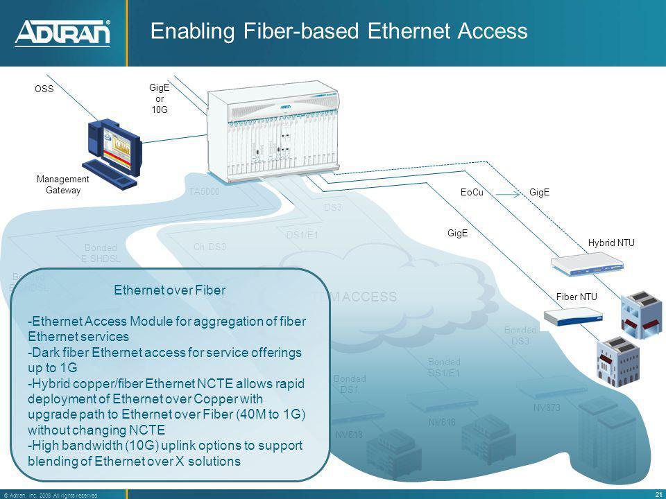 Enabling Fiber-based Ethernet Access