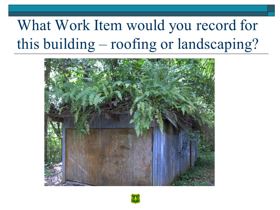What Work Item would you record for this building – roofing or landscaping