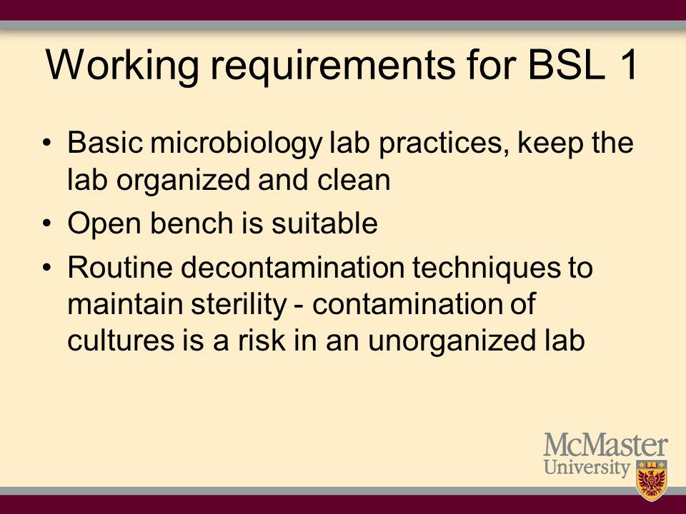 Working requirements for BSL 1