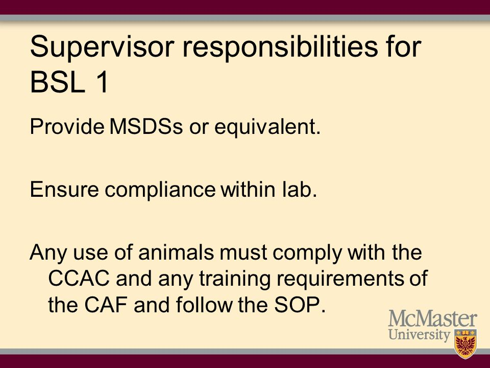 Supervisor responsibilities for BSL 1