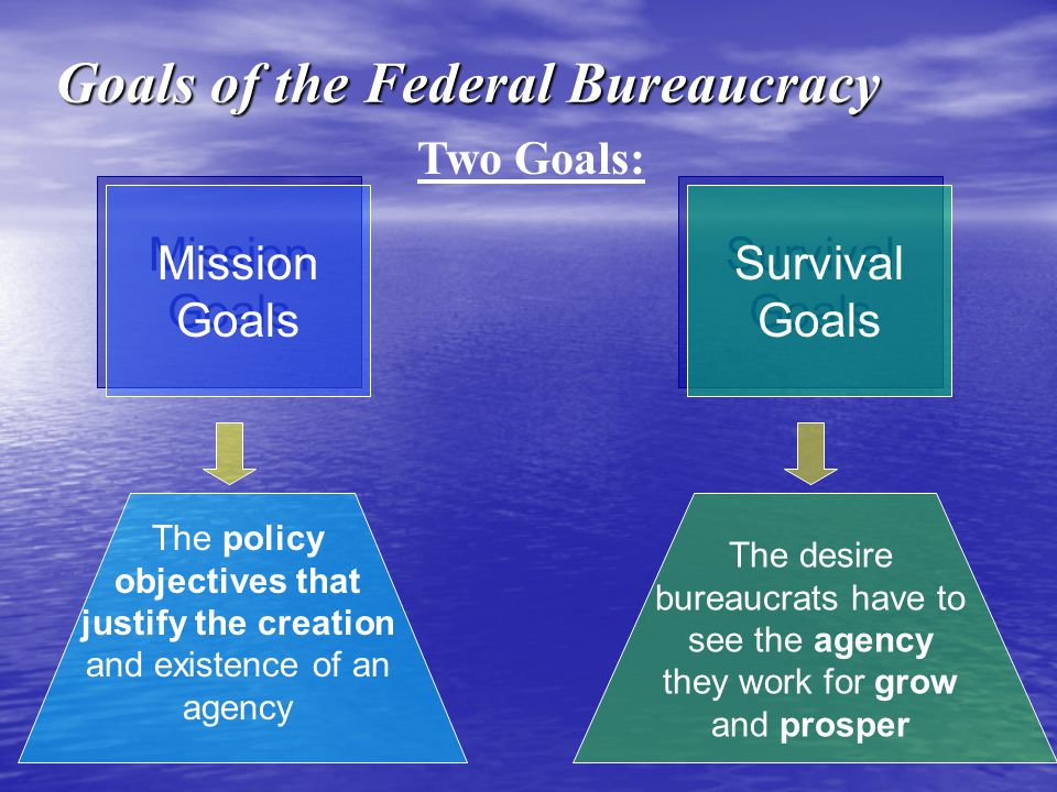 Goals of the Federal Bureaucracy