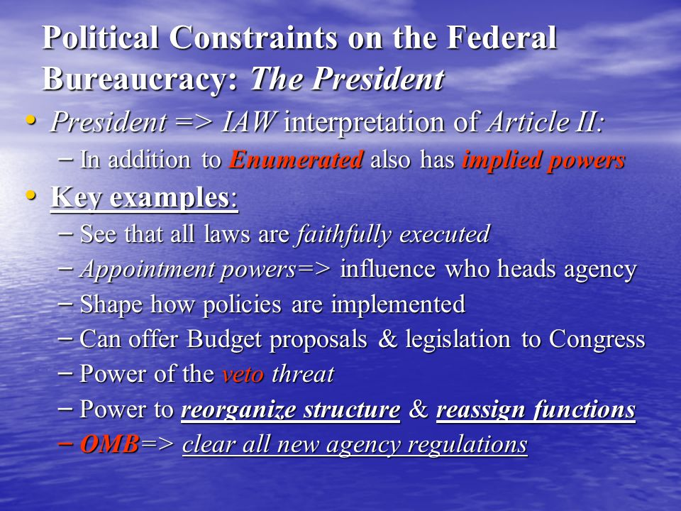 Political Constraints on the Federal Bureaucracy: The President