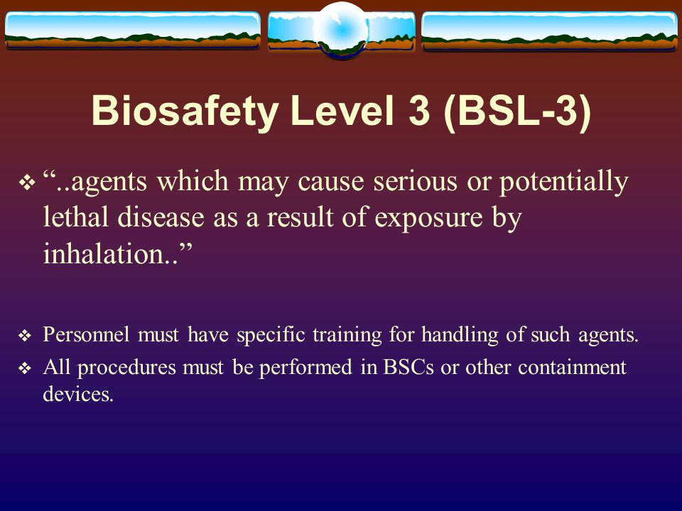 Biosafety Level 3 (BSL-3)