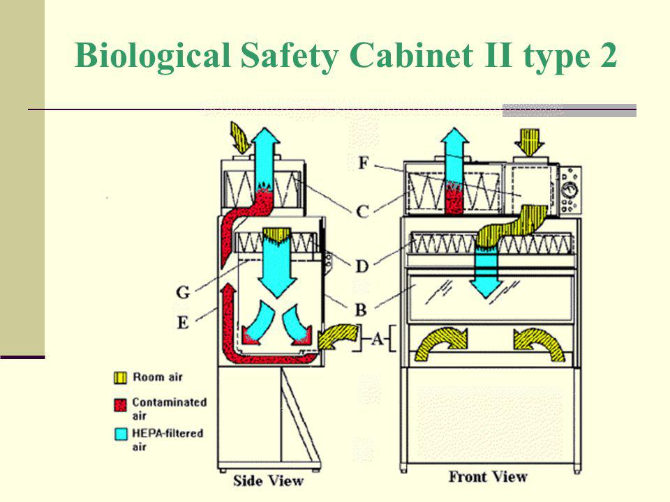 Biological Safety Cabinet II type 2