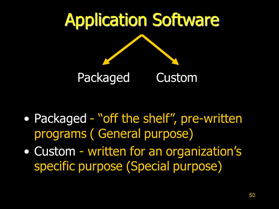 Application Software Packaged Custom