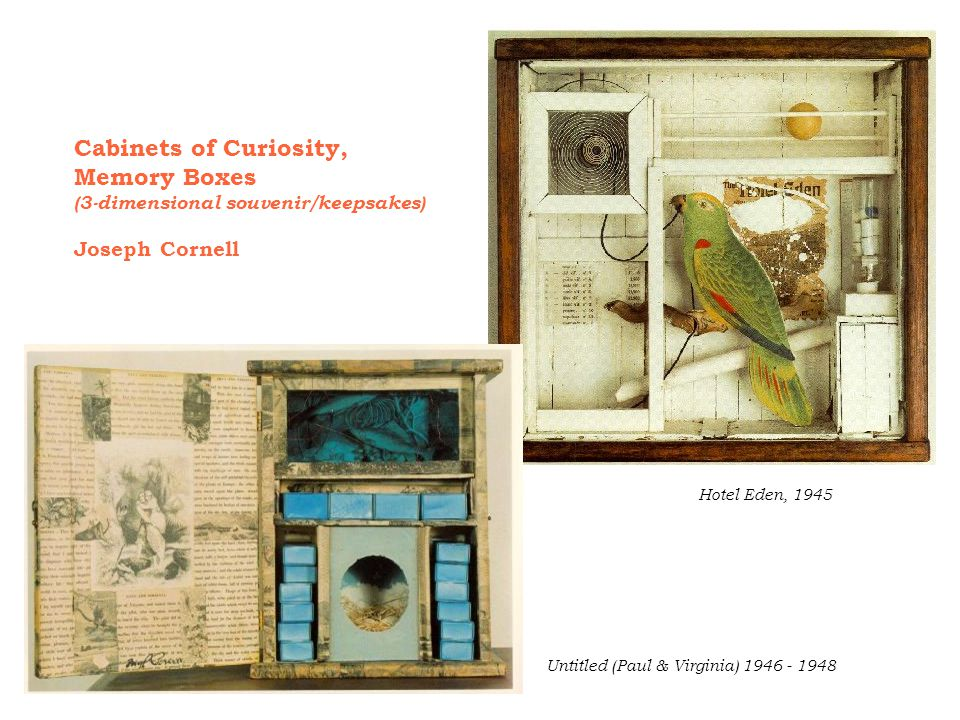Cabinets of Curiosity, Memory Boxes Joseph Cornell