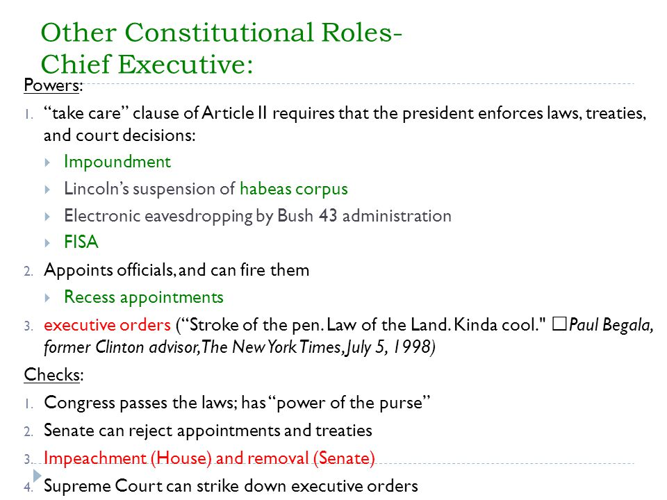 Other Constitutional Roles- Chief Executive: