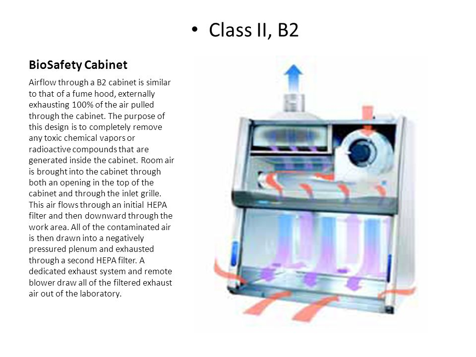 Chemical Fume hood or Biosafety Cabinet - ppt download