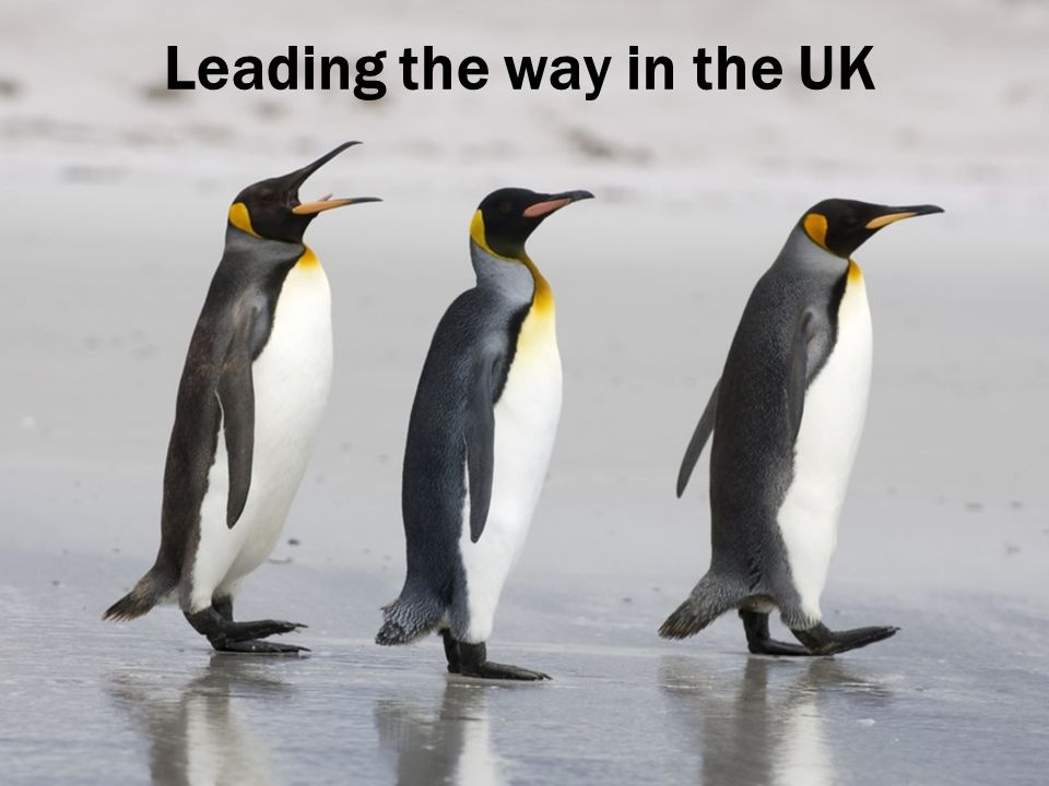Leading the way in the UK