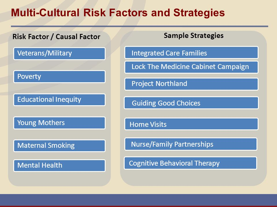 Multi-Cultural Risk Factors and Strategies