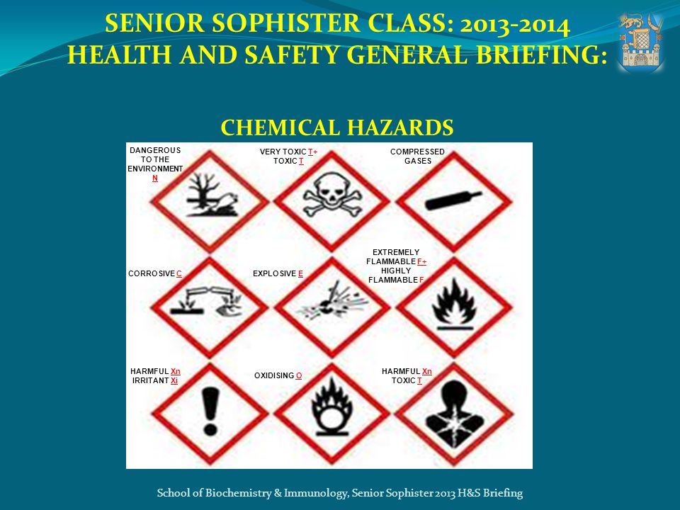 SENIOR SOPHISTER CLASS: 2013-2014 HEALTH AND SAFETY GENERAL BRIEFING: