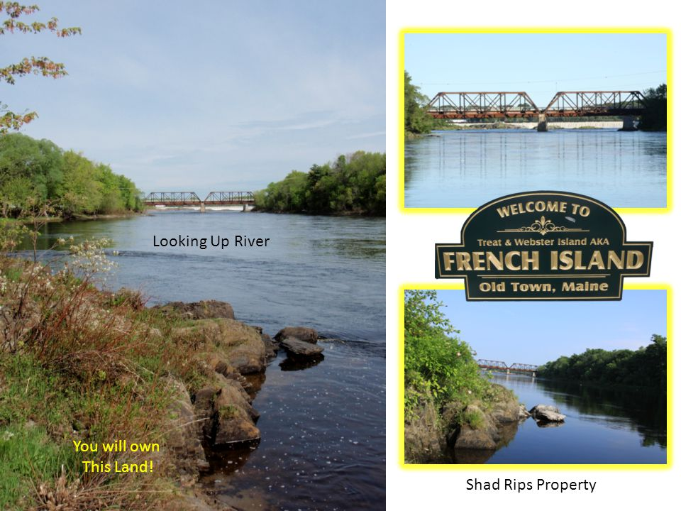 Looking Up River You will own This Land! Shad Rips Property