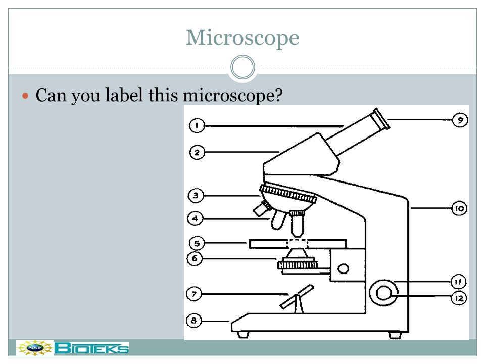 Microscope Can you label this microscope Do you want a footer
