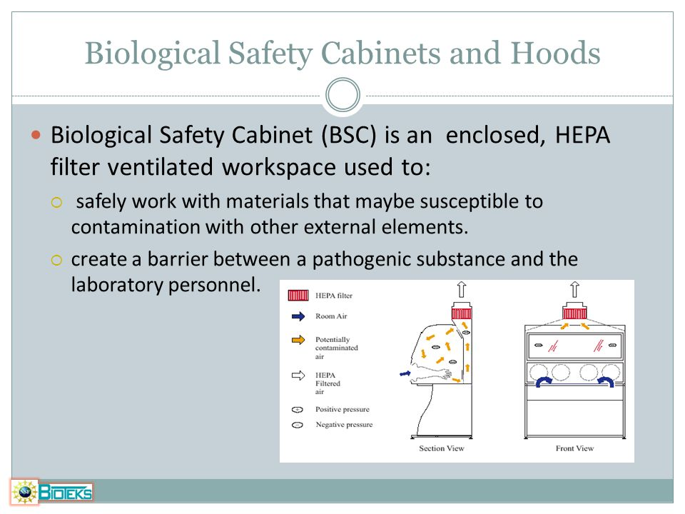 Biological Safety Cabinets and Hoods